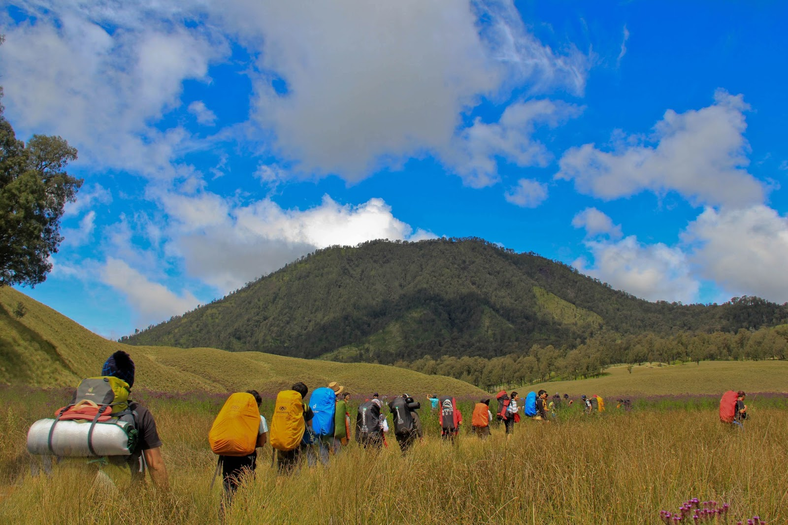 SEMERU TREKKING and MOUNT BROMO TOUR PACKAGE 5 DAYS