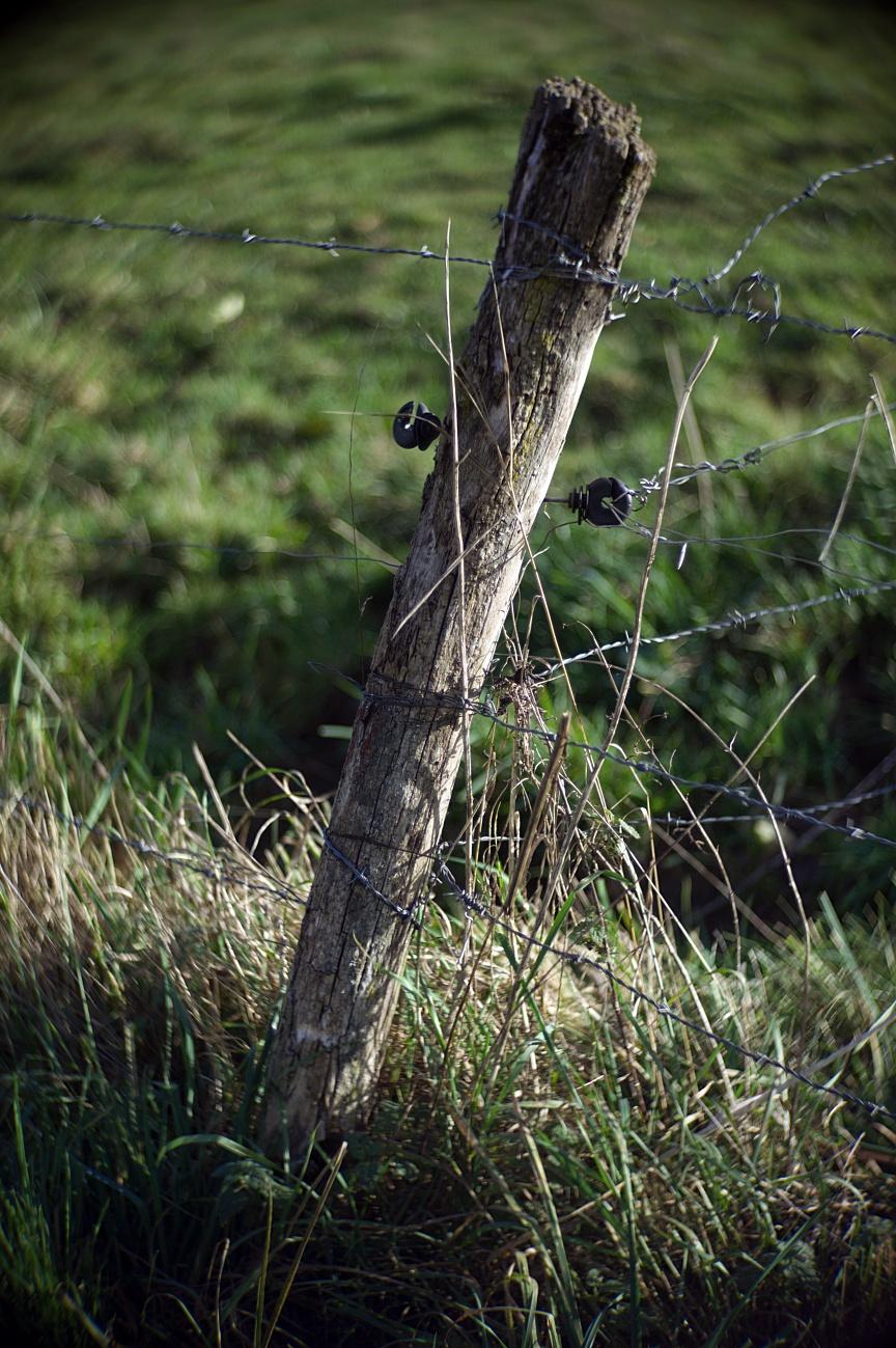 Vollpfosten, Hohlpfosten und Pfosten im Allgemeinen (5)