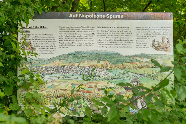 Panoramaweg Taubertal Etappe 3 Tauberbischofsheim - Bad Mergentheim 12
