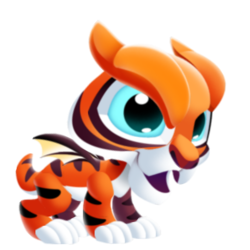 Appearance of Tiger Dragon when baby