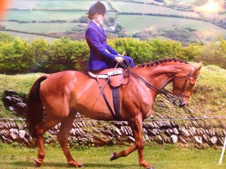 LADIES RIDE ASIDE: Under the Habit (side saddle bared)