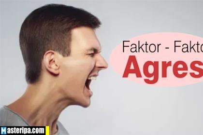 Faktor-Faktor Yang Menyebabkan Agresi dalam Psikologi Sosial