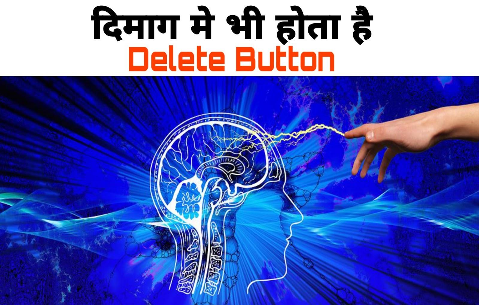 क्या आपको पता है दिमाग के पास भी होता है Delete Button ? | Do you know brain has a delete button