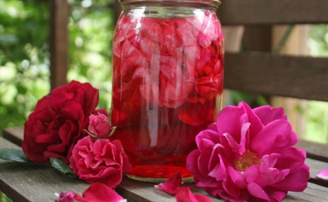 Como Fazer Água de Rosas Passo a Passo