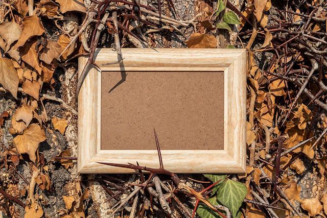Empty Wooden Frames 2