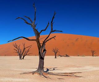معنى المشي في الصحراء في حلم المتزوجة