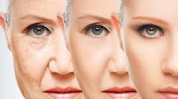 Medicine 2.0 - Sửa chữa thành công các thiệt hại tế  bào do lão hóa
