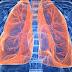 7 de setembro: Dia Mundial da Fibrose Pulmonar Idiopática