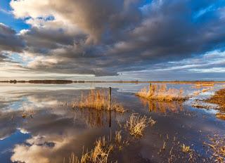 foto cover Jaarrapportage ecologische waterkwaliteit en natuur 2019