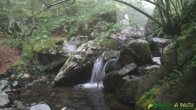 Río Vallizón, Ponga