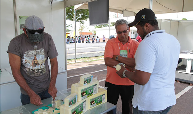 Com a Lei de Liberdade Econômica, abertura de empresas em Rondônia cresceu 26% entre outubro e novembro