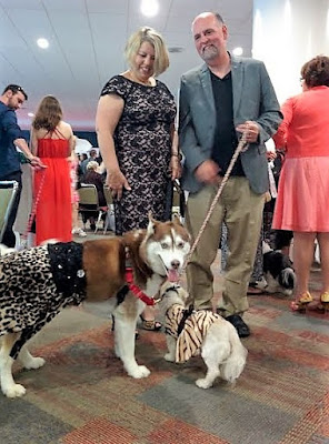 At the BlogPaws social media and bloggers conference with my husband, Icy & Phoebe.