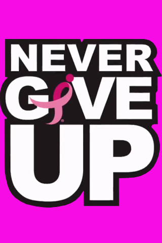 JOHN CENA NEVER GIVE UP LOGO - Wrestling & Sports ...  |John Cena Logo Never Give Up 2014