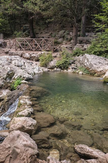 Cipresseta di Fontegreca picnic