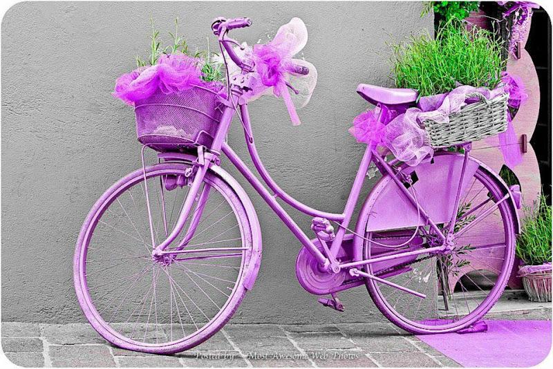 Bicicletas Para Decorar Paredes