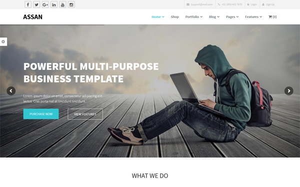 Assan WP Themes, Fully Responsive And Great in Smaller Devices