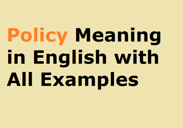 Policy Meaning in English with All Examples