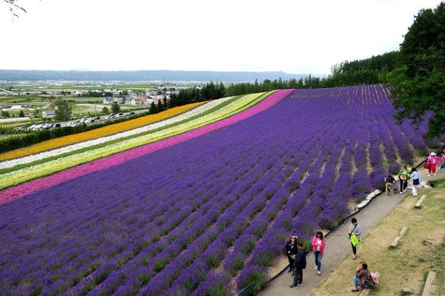 23 Kebun Bunga Terunik dan Terindah Di Dunia