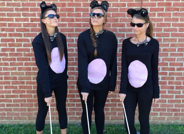 Three Blind Mice: Homework with a Third Grader - Official Website - BenjaminMadeira