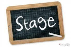 Offre de stage professionnel: Auditeur Junior