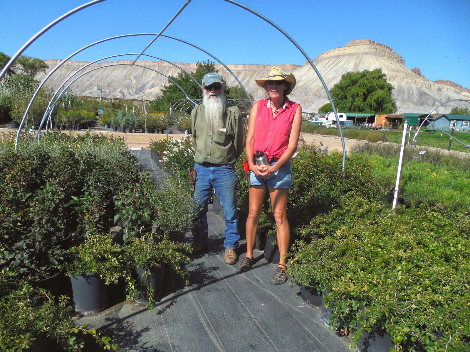 Chelsea A Colorado Native Plant Nursery