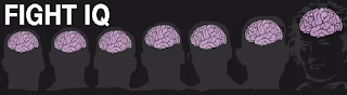 Fight IQ – LIFE IQ