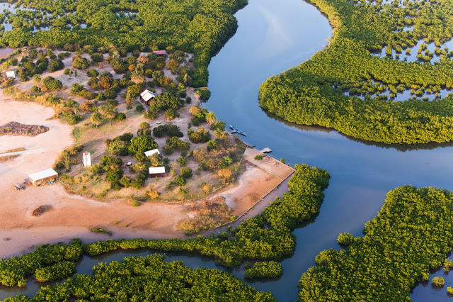 Parc, animaux, visite, tourisme, sauvage, oiseaux, LEUKSENEGAL, Dakar, Sénégal, Afrique
