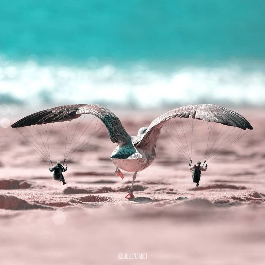 01-Taking-Flight-Julien-Tabet-Animals-and-Architecture-Photoshopped-Surrealism-www-designstack-co