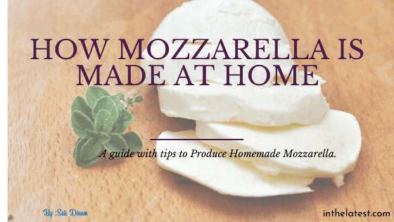 The best way to Produce Homemade Mozzarella