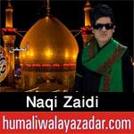 https://aliwalayazadar.blogspot.com/2020/08/naqi-zaidi-nohay-2021.html