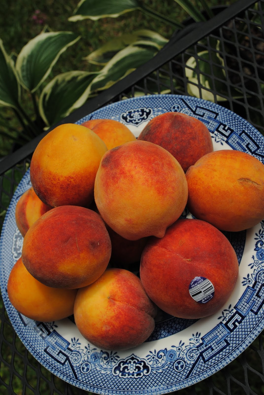 Harvesting Peaches - How And When Should A Peach Be Harvested