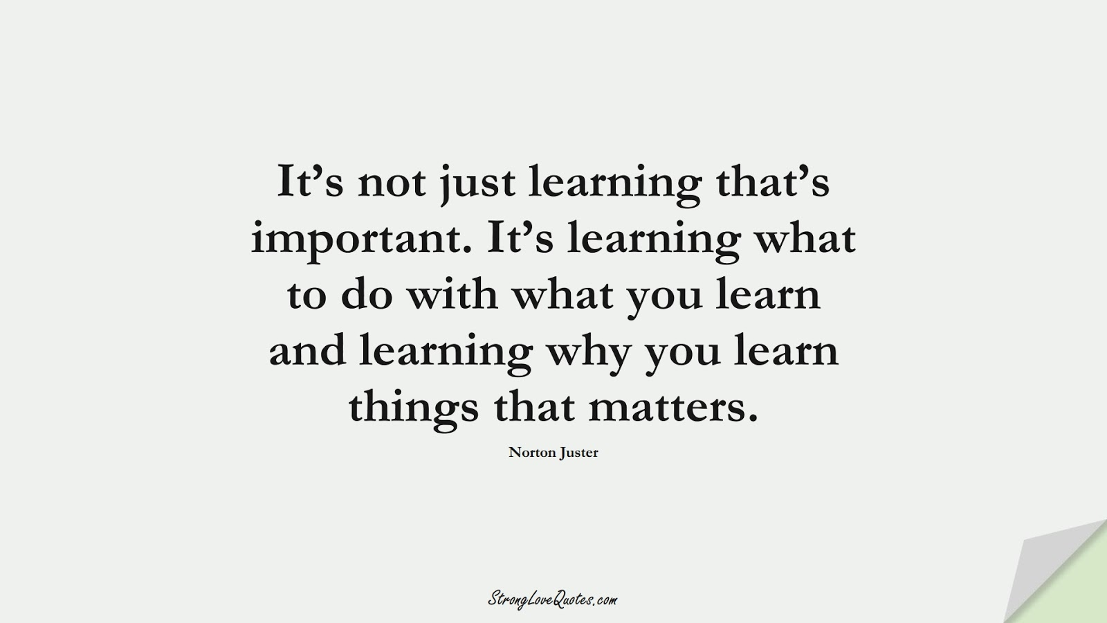 It's not just learning that's important. It's learning what to do with what you learn and learning why you learn things that matters. (Norton Juster);  #LearningQuotes