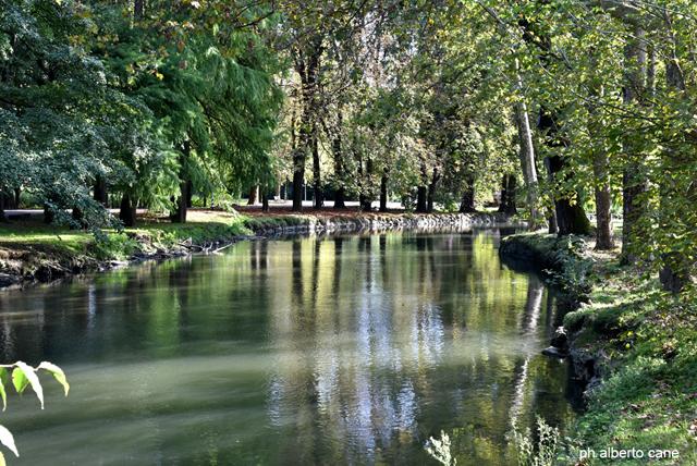 Milano, Parco Lambro. Colori scialbi in attesa del rosseggiante autunno.