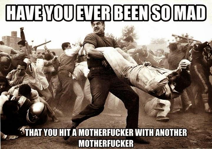 Adult humor brawl
