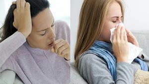 Cara Mengobati Flu  Dengan Cepat