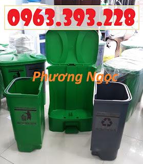 Thùng rác 2 ngăn 40L đạp chân, thùng rác nhựa HDPE 40 Lít 1a316ee63b3cd962802d