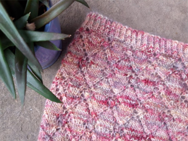 Image shows a close up of the cowl lace pattern.  To the left of the cowl is a spiky-leaved plant in a blue pot.