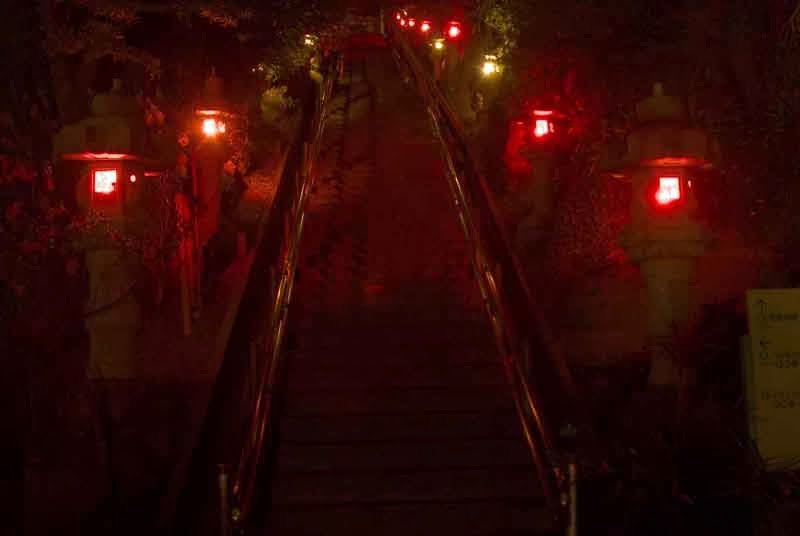 lighted stone lanterns line stairway