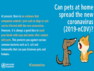 Corona virus spreads by pets