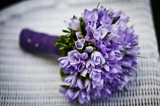 fiori per casa