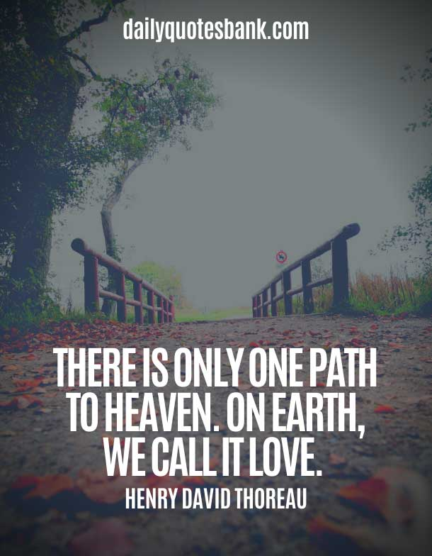 Quotes About Paths and Love