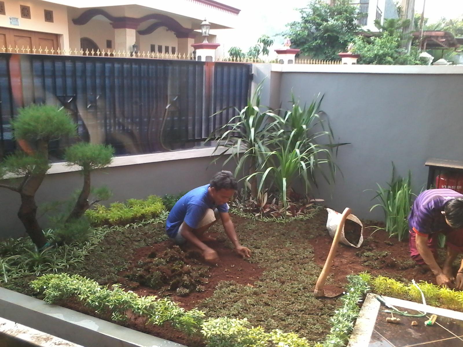 Cara Membuat Taman Depan Rumah Sederhana Destaman