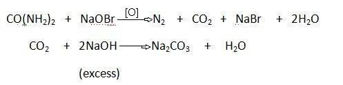 Urea Reaction with Alkaline Hypohalites.