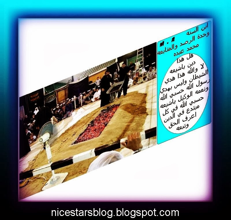 تحميل كتاب فصل الخطاب في تحريف كتاب رب الأرباب pdf