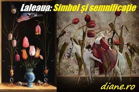Laleaua: Simbol și semnificație floare