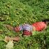 Usuário de drogas foi assassinado no morada nova em Caruaru,PE