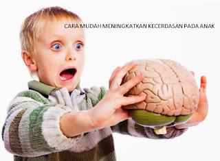 Meningkatkan kecerdasan pada anak menggunakan cara yang mudah kita lakukan