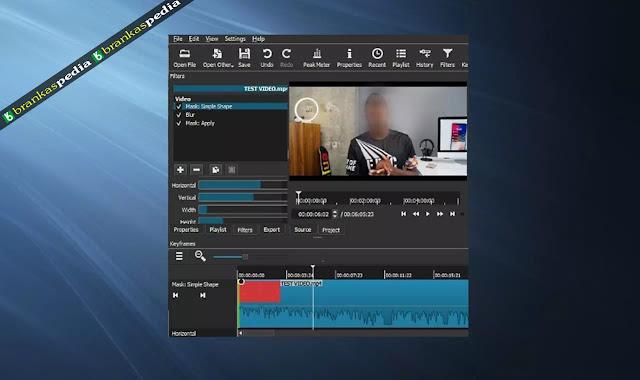 Software Untuk Memberi Efek Blur Pada Wajah di Video