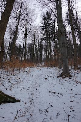 Chełmiec strome zejście północne