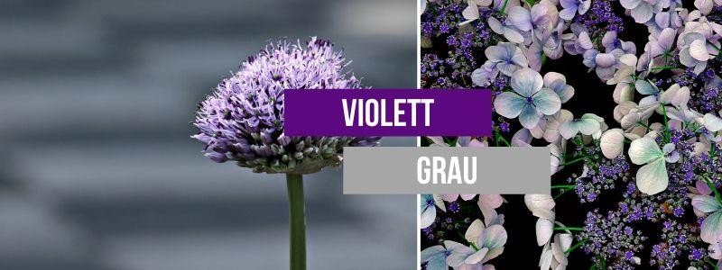 violett-grau-kombinieren